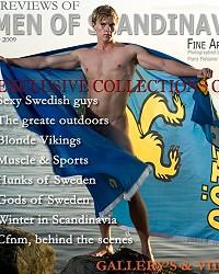 sexy swedish guy