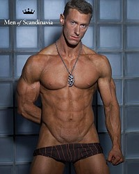 swedish hunk